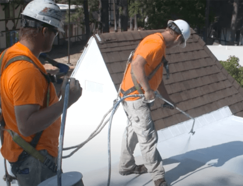 Fluid Applied Roofing Spotlight