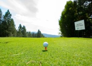 SVCC-Golf