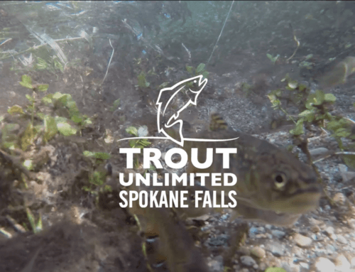 Spokane Falls Trout Unlimited: Waikiki Dairy Project